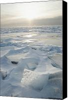 Frozen Canvas Prints - Minnesota, United States Of America Ice Canvas Print by Susan Dykstra