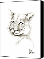 Woods Drawings Canvas Prints - Missouri Mountain Lion II Canvas Print by Kip DeVore
