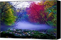 Valley Green Canvas Prints - Misty Creek Canvas Print by Bill Cannon