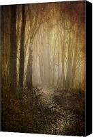 Woodland Canvas Prints - Misty Woodland Path Canvas Print by Meirion Matthias