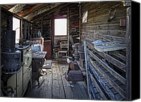 Pioneers Canvas Prints - Molson Ghost Town Storage Shed Canvas Print by Daniel Hagerman