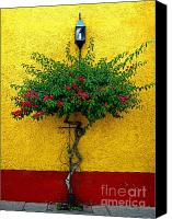 Tlaquepaque Canvas Prints - Moment of Green Canvas Print by Olden Mexico