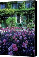 Tulips Canvas Prints - Monets House with Tulips Canvas Print by Kathy Yates