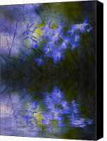 Bluet Canvas Prints - Monets Pool Canvas Print by Ron Jones