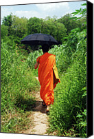 Adults Only Canvas Prints - Monk Walking, Luang Prabang, Laos Canvas Print by Thepurpledoor