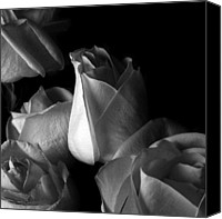 Monocromatico Canvas Prints - Monocromatico Canvas Print by Phachesnie Studio