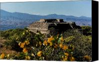 Indian Ruins Canvas Prints - Monte Alban 4 Canvas Print by Michael Peychich