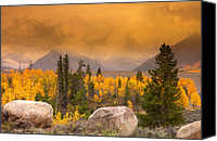 Fall Scenes Canvas Prints - Moody Canvas Print by Tim Reaves