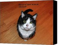 Black And White Cats Canvas Prints - More Words From  Teddy the Ninja Cat Canvas Print by Reb Frost