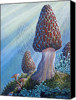 Forest Floor Painting Canvas Prints - Morel Mushrooms Canvas Print by Mike Stinnett