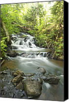 Michigan Waterfalls Canvas Prints - Morgan Falls 4579 Canvas Print by Michael Peychich