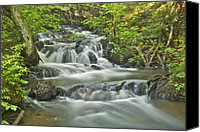Michigan Waterfalls Canvas Prints - Morgan Falls 4584 Canvas Print by Michael Peychich