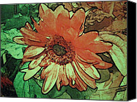 Daisies Pyrography Canvas Prints - Morning 2 Canvas Print by Cynthia Edwards