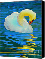 Swan Canvas Prints - Morning Bath Canvas Print by Robert Hooper