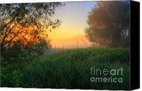 Morning Sun Canvas Prints - Morning Color-5 Canvas Print by Robert Pearson