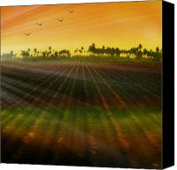 Ploughed Canvas Prints - Morning has broken Canvas Print by Holly Kempe