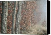 Treescape Canvas Prints - Morning Sigh Canvas Print by Odd Jeppesen