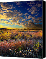 Fall Leaves Canvas Prints - Morning Splendor Canvas Print by Phil Koch