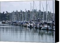 Sausalito Canvas Prints - Morning Water Reflections Canvas Print by Sarah Kathleen Peck