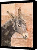Donkey Mixed Media Canvas Prints - Moroccan donkey Canvas Print by Laura Vazquez