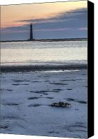 Morris Island Light House Morning Folly Beach Lowcountry South Carolina Landscape Grass Beach Hdr Canvas Prints - Morris Island Lighthouse and Crab Canvas Print by Dustin K Ryan