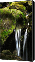 Serenity Canvas Prints - Mossy Falls Canvas Print by Bill  Wakeley