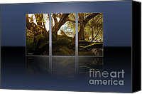 Beautiful Tree Canvas Prints - Mossy Tree Triptych 1 Canvas Print by Cheryl Young