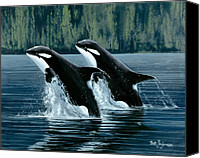 Whale Painting Canvas Prints - Mother and Son Orcas Canvas Print by Bob Patterson