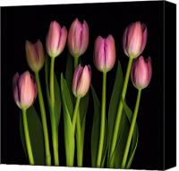 Floral Canvas Prints - Mother Canvas Print by Deborah J Humphries