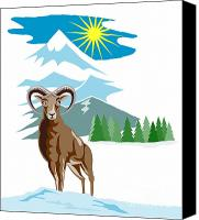 Goat Canvas Prints - Mouflon Sheep Mountain Goat Canvas Print by Aloysius Patrimonio