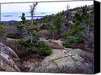 Acadia Canvas Prints - Mount Desert Island Canvas Print by Skip Willits