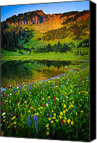 Lupines Canvas Prints - Mount Rainier Lake Canvas Print by Inge Johnsson