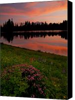 Lupine Canvas Prints - Mountain Heather Reflections Canvas Print by Mike  Dawson