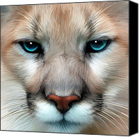 Mountain Lion Digital Art Canvas Prints - Mountain Lion Canvas Print by Julie L Hoddinott