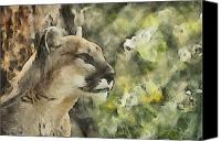 Mountain Lion Digital Art Canvas Prints - Mountain Lion Painterly Canvas Print by Ernie Echols