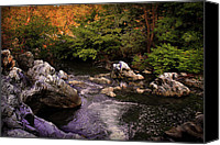Woods Pyrography Canvas Prints - Mountain River With Rocks Canvas Print by Radoslav Nedelchev