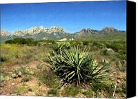 Southwestern Canvas Prints - Mountain View Las Cruces Canvas Print by Kurt Van Wagner
