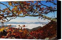 Mountain View Canvas Prints - Mountain Vista thru Trees Canvas Print by Alan Lenk