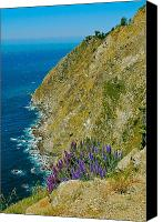 Beaches Special Promotions - Mountaintop View Canvas Print by Mark Lemon
