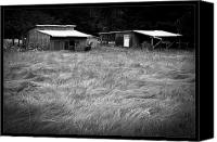 Sheds Canvas Prints - Moving Grass Canvas Print by Dale Stillman