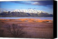 Wetlands Canvas Prints - Mt. Timpanogos and Utah Lake Canvas Print by Utah Images