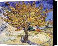 Tree Canvas Prints - Mulberry Tree Canvas Print by Vincent Van Gogh