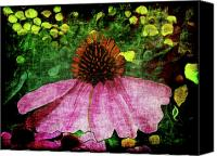 Cone Flowers Canvas Prints - My Garden 2 Abstract Grunge Canvas Print by Ernie Echols
