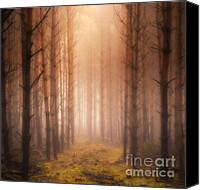 Color Photography Canvas Prints - Mystic Canvas Print by Kristin Kreet