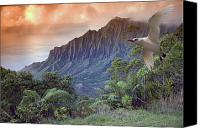 Dave Canvas Prints - Na Pali Coast Canvas Print by Dave Fleetham - Printscapes