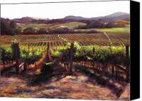 Contry Canvas Prints - Napa Carneros Summer Light Canvas Print by Takayuki Harada