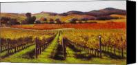 Contry Canvas Prints - Napa Carneros Vineyard Autumn Color Canvas Print by Takayuki Harada