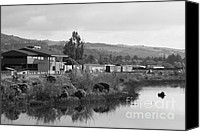 Wine Train Canvas Prints - Napa River in Napa California Wine Country . Black and White Canvas Print by Wingsdomain Art and Photography