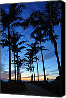 Tropical Sunset Canvas Prints - Naples Florida Canvas Print by Christine Stonebridge