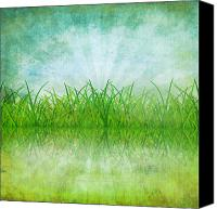 Materials Canvas Prints - Nature And Grass On Paper Canvas Print by Setsiri Silapasuwanchai